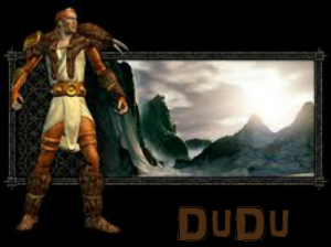 Fury Druid Guide by Myrddrall9 - Experience of D2 Players
